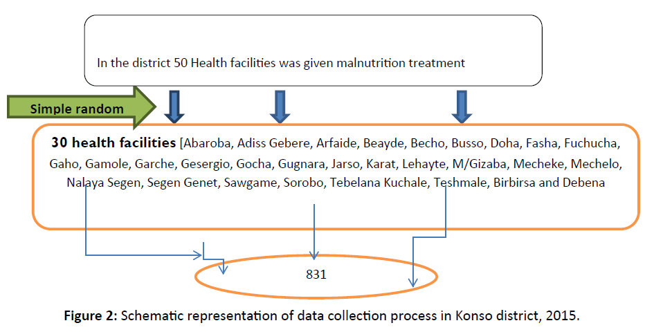 primarycare-collection-process